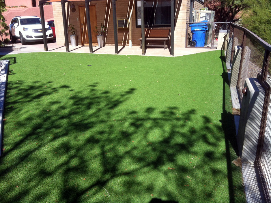 Grass Carpet Port Charlotte Florida Home And Garden Backyards - Backyard design charlotte