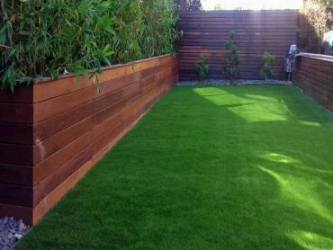 Artificial Grass Photos: Artificial Grass Abilene, Texas Home And Garden, Small Backyard Ideas