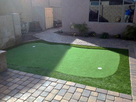 Artificial Grass Photos: Artificial Grass Bensonhurst, New York Golf Green, Backyard Landscaping