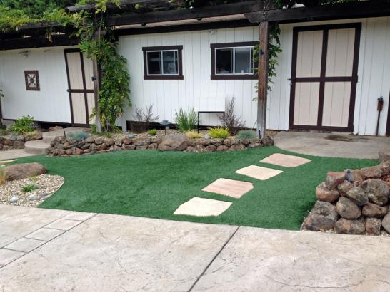 Artificial Grass Photos: Artificial Grass Carpet Bend, Oregon Lawns, Front Yard Design
