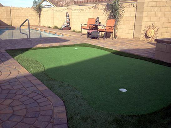 Artificial Grass Photos: Artificial Grass Carpet Bowling Green, Kentucky Office Putting Green, Natural Swimming Pools