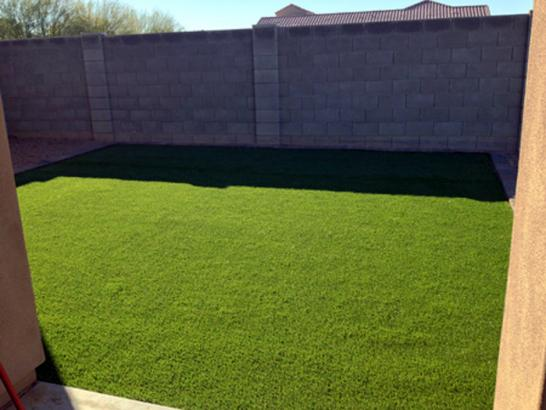 Artificial Grass Photos: Artificial Grass Carpet Fairfield, Connecticut Roof Top, Backyard Landscaping Ideas
