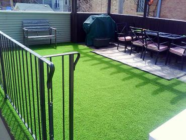Artificial Grass Photos: Artificial Grass Carpet North Glendale, California Landscaping Business, Backyard Design