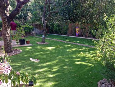 Artificial Grass Photos: Artificial Grass El Cajon, California Landscape Design, Backyard Makeover