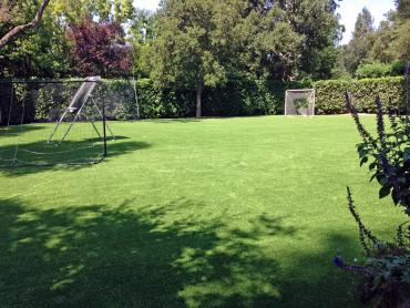 Artificial Grass Photos: Artificial Grass Installation Fort Collins, Colorado Sports Turf, Beautiful Backyards