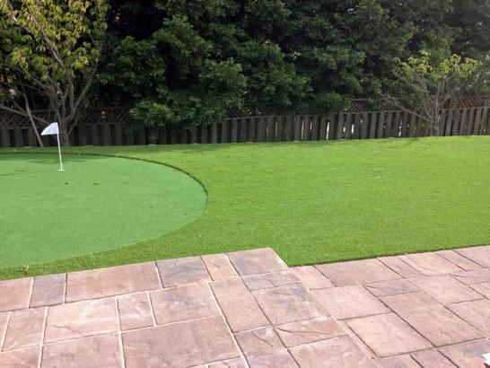 Artificial Grass Photos: Artificial Grass Missoula, Montana Garden Ideas, Backyard Landscaping Ideas
