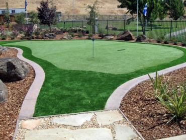 Artificial Grass Photos: Artificial Grass Sandy Springs, Georgia Lawns, Backyard Ideas