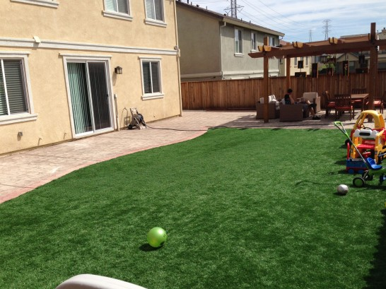 Artificial Grass Photos: Artificial Grass Troy, New York Lawn And Landscape, Backyard