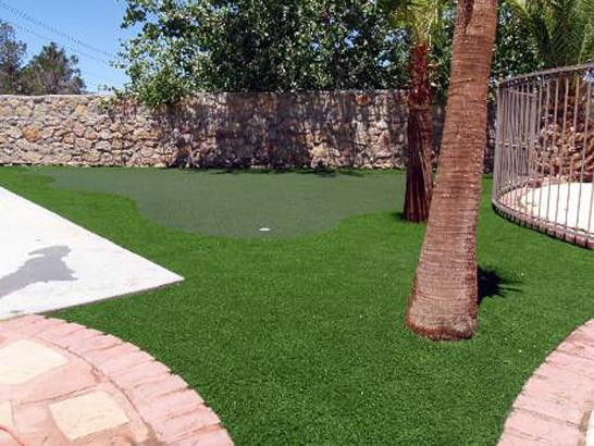 Artificial Grass Photos: Artificial Lawn Castro Valley, California Lawn And Garden, Backyard