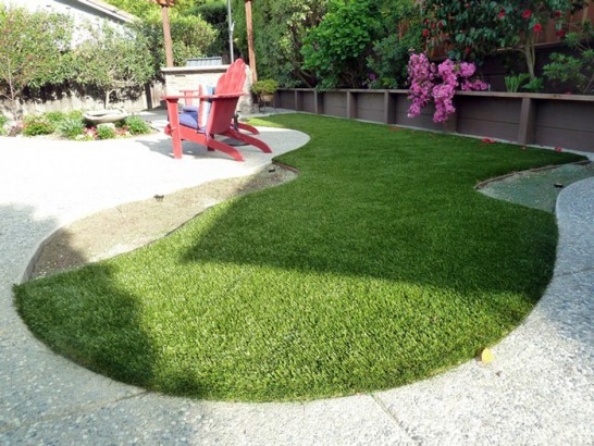 Artificial Grass Photos: Artificial Lawn Saint Peters, Missouri Dog Parks, Backyard Landscaping Ideas