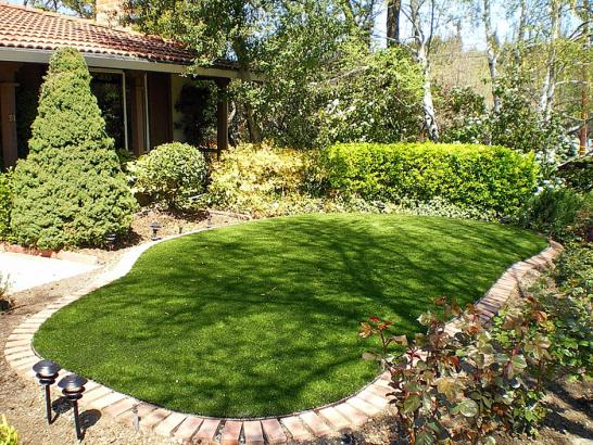 Artificial Grass Photos: Artificial Turf Brookline, Massachusetts Gardeners, Backyard Garden Ideas