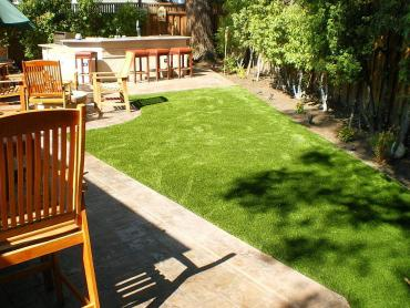 Artificial Grass Photos: Artificial Turf Cost Arlington, Virginia Hotel For Dogs, Backyard Makeover