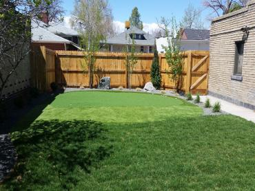 Artificial Grass Photos: Artificial Turf Cost Birmingham, Alabama Backyard Deck Ideas, Small Backyard Ideas