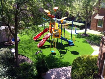 Artificial Grass Photos: Artificial Turf Cost Little Rock, Arkansas Garden Ideas, Commercial Landscape