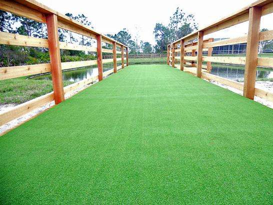 Artificial Grass Photos: Artificial Turf Cost Somerville, Massachusetts Dog Parks, Commercial Landscape