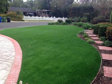 Artificial Grass Photos: Artificial Turf Independence, Missouri Garden Ideas, Small Front Yard Landscaping