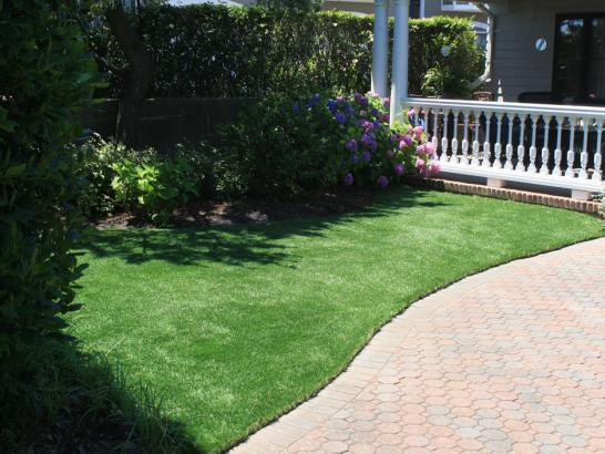 Artificial Grass Photos: Artificial Turf Installation Bethlehem, Pennsylvania Cat Grass, Front Yard Landscaping Ideas