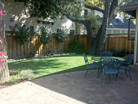 Artificial Grass Photos: Best Artificial Grass Atascocita, Texas, Backyard Landscaping Ideas
