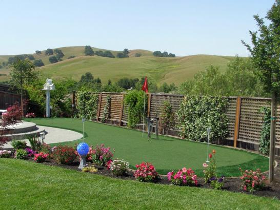 Artificial Grass Photos: Best Artificial Grass Eden Prairie, Minnesota Putting Green Carpet, Backyard Design
