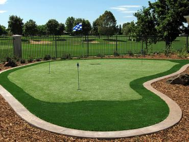 Artificial Grass Photos: Best Artificial Grass Quincy, Massachusetts Paver Patio, Backyard Makeover