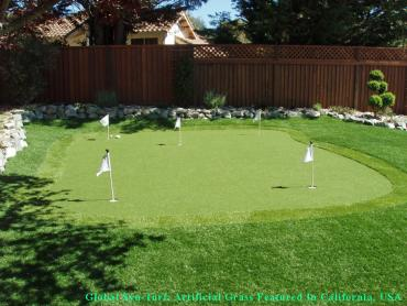 Best Artificial Grass San Antonio, Texas Putting Green Grass, Backyard Design artificial grass
