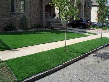 Artificial Grass Photos: Best Artificial Grass Surprise, Arizona Gardeners, Front Yard Landscape Ideas