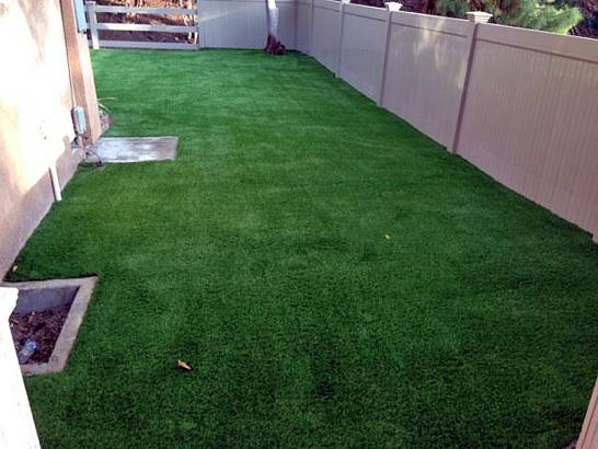 Artificial Grass Photos: Best Artificial Grass Tamarac, Florida Design Ideas, Small Backyard Ideas