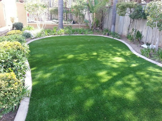 Artificial Grass Photos: Fake Grass Brentwood, California Landscape Photos