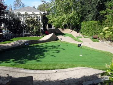 Artificial Grass Photos: Fake Grass Carpet Allen, Texas Putting Green, Small Backyard Ideas