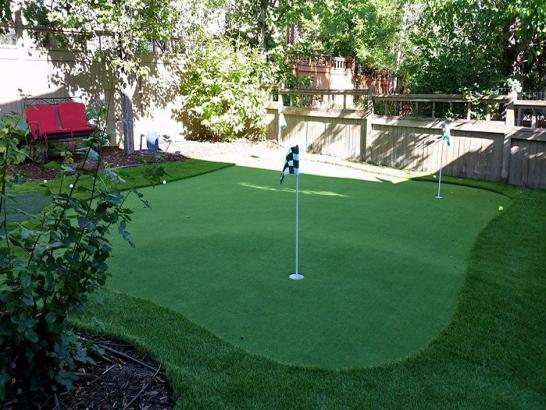 Artificial Grass Photos: Fake Grass Carpet Kettering, Ohio Home And Garden, Backyard Landscaping Ideas