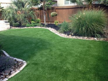 Artificial Grass Photos: Fake Grass Carpet Rialto, California Pictures Of Dogs, Backyards