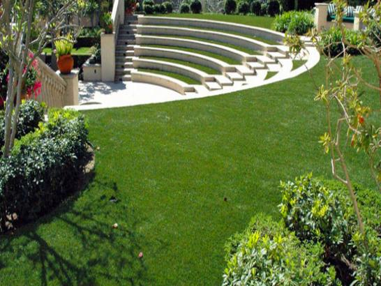 Fake Grass Carpet Saint Cloud, Minnesota Garden Ideas artificial grass
