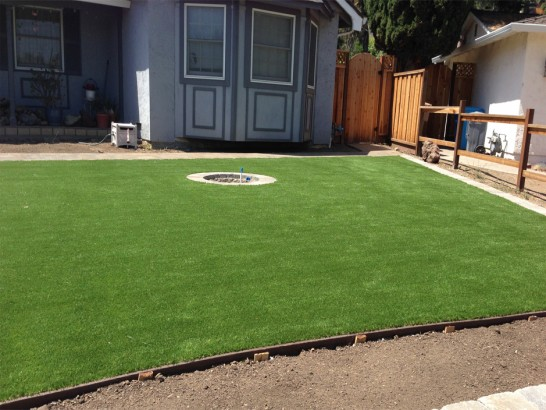 Artificial Grass Photos: Fake Grass Margate, Florida Home And Garden, Beautiful Backyards
