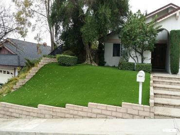 Artificial Grass Photos: Fake Grass Whittier, California Garden Ideas, Small Front Yard Landscaping