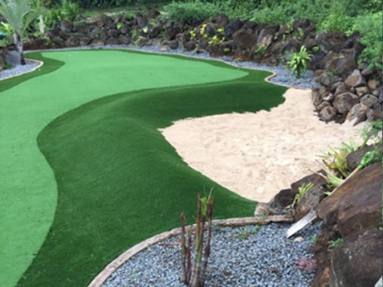 Artificial Grass Photos: Fake Lawn Aloha, Oregon Outdoor Putting Green, Backyard