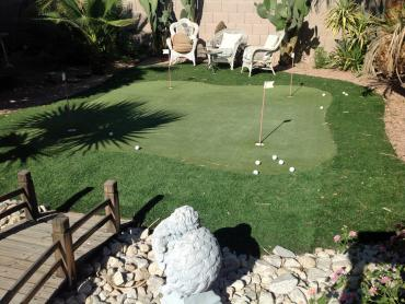 Artificial Grass Photos: Fake Lawn Hoover, Alabama Home Putting Green, Backyard Ideas