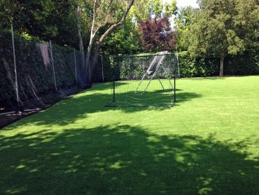 Artificial Grass Photos: Fake Lawn Murrieta, California High School Sports, Beautiful Backyards