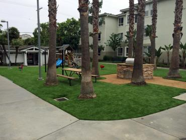 Artificial Grass Photos: Fake Lawn Orlando, Florida Landscaping Business, Commercial Landscape