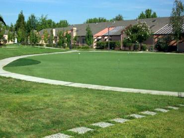 Artificial Grass Photos: Fake Lawn Redding, California City Landscape, Commercial Landscape