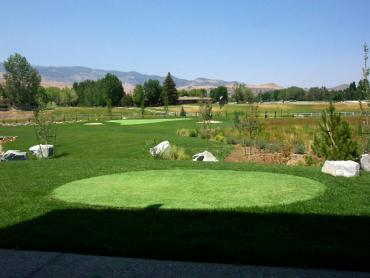 Artificial Grass Photos: Fake Lawn Renton, Washington Putting Greens, Backyard Design