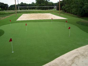 Artificial Grass Photos: Fake Lawn Tallahassee, Florida Office Putting Green, Backyards
