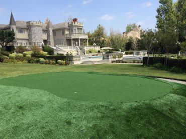 Artificial Grass Photos: Fake Turf Las Vegas, Nevada Putting Green Carpet, Front Yard