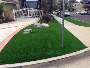 Artificial Grass Photos: Fake Turf Miami Gardens, Florida Backyard Playground, Front Yard