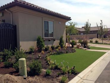 Artificial Grass Photos: Fake Turf Palm Bay, Florida Lawn And Garden, Landscaping Ideas For Front Yard