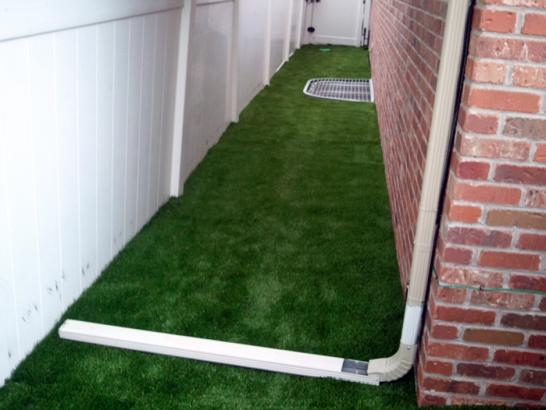 Artificial Grass Photos: Faux Grass Avondale, Arizona Garden Ideas, Backyard