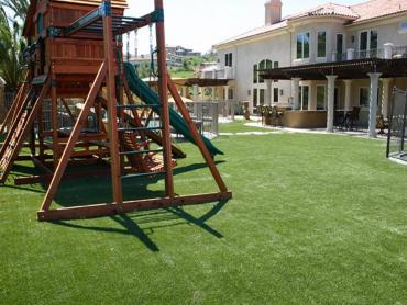 Artificial Grass Photos: Faux Grass Des Moines, Iowa Rooftop, Backyard Landscaping Ideas