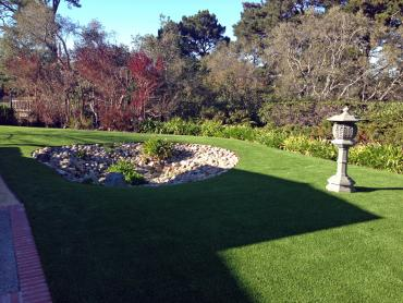 Faux Grass Fresno, California Landscape Rock, Backyard Ideas artificial grass
