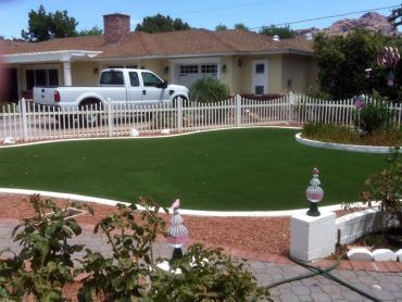 Artificial Grass Photos: Faux Grass Overland Park, Kansas Landscaping, Front Yard Ideas