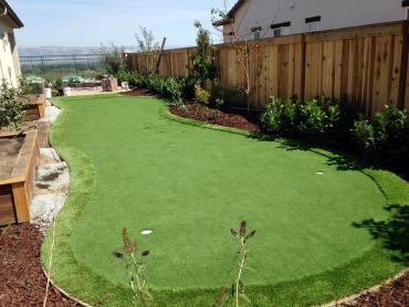 Artificial Grass Photos: Faux Grass Yakima, Washington Home And Garden, Backyard Designs