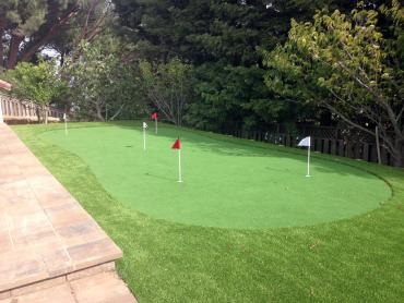 Artificial Grass Photos: Grass Carpet Bloomington, Indiana Outdoor Putting Green, Backyard Design